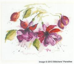 FUCHSIA IN WATERCOLOUR